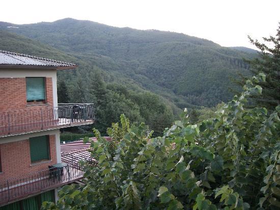 Hotel Arcobaleno: Blick vom Zimmer aus