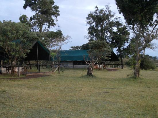 Governors' Balloon Safaris: tents next door