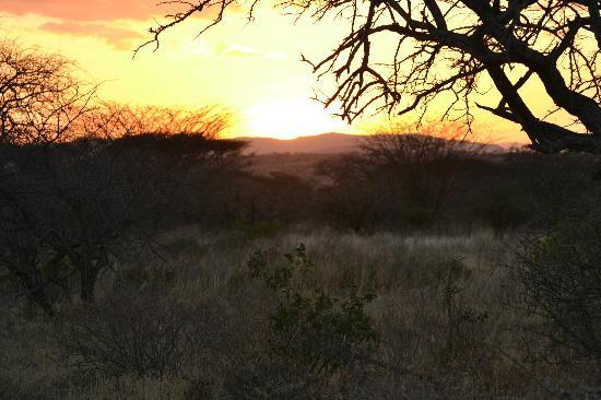 Oliver's Camp, Asilia Africa: Tarangire sunset
