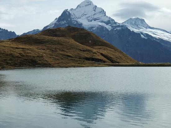 Grindelwald, Suiza: 2