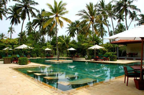 Serene Pavilions: pool 