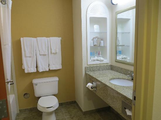 Holiday Inn Express Suites Ocala - Silver Springs: Salle de bains