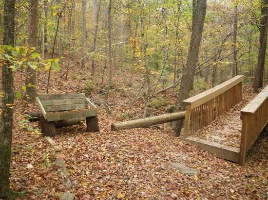 Pickett's Mill Battlefield: Bridge and bench