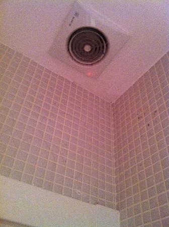 Hostal Foster: La sporcizia sulla ventola del bagno