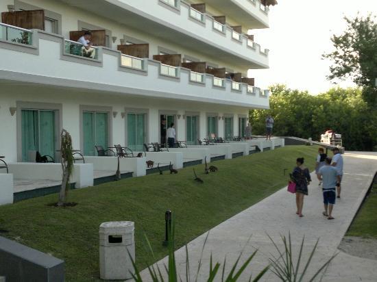 BlueBay Grand Esmeralda: Część hotelowa