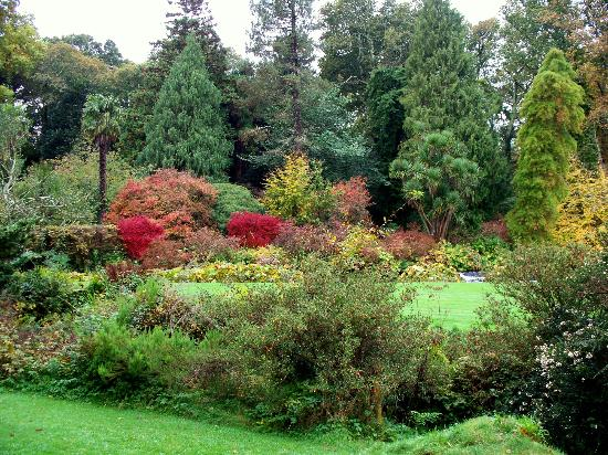 Mount Usher Gardens: Nature at its very best