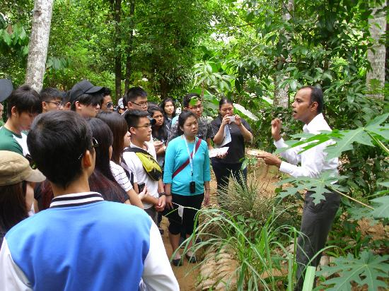 New Paradise Spice & Herbal Garden: Guide is explaining about herbals