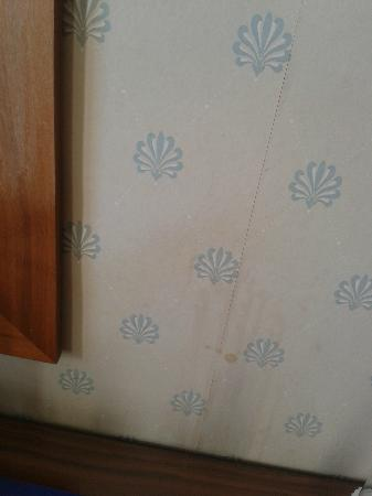 "St. Ives Harbour Hotel & Spa: ""luxury accommodation"" - stained wallpaper"