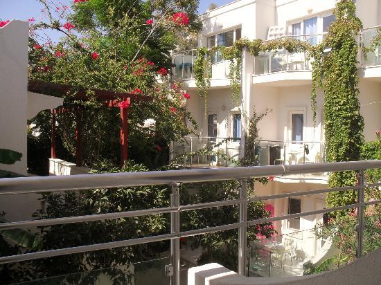 Turihan Hotel: View