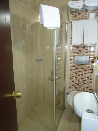 Best Town Palace: Room with compact shower/toilet/washbasin
