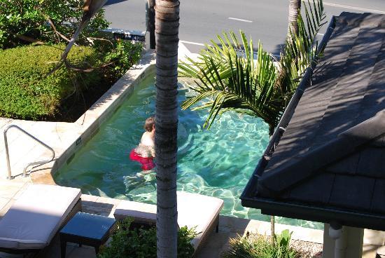 Portside Whitsunday : Pool