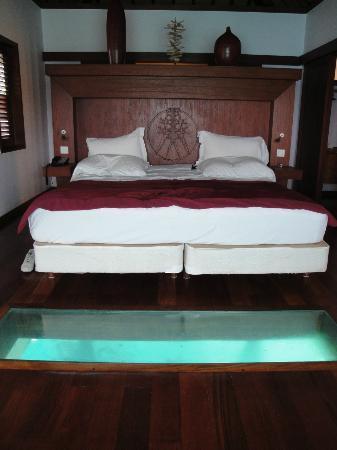 Sofitel Bora Bora Marara Beach Resort : IL LETTONE.....