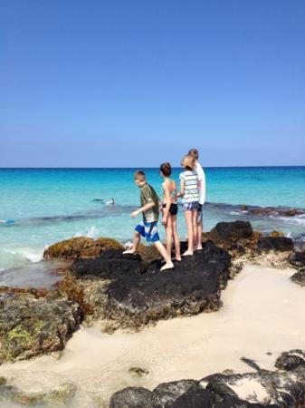 Manini'owali Beach (Kua Bay): awesome place