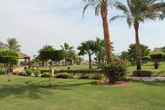 Coral Sea Holiday Village: Grounds