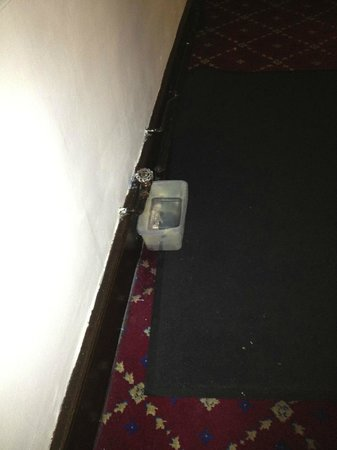 Quorn Country Hotel: 4* Solution to leaking pipe.
