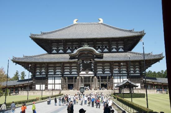 奈良公園照片