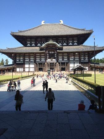 Парк Нара: Nara