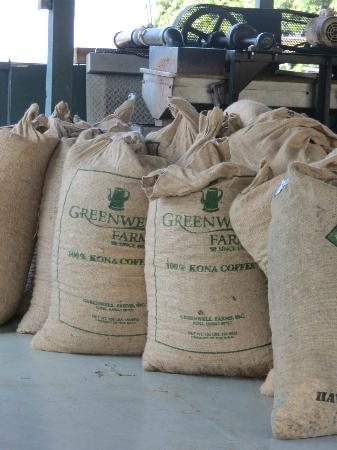 Greenwell Farms: Dried beans ready for storage...before roasting.