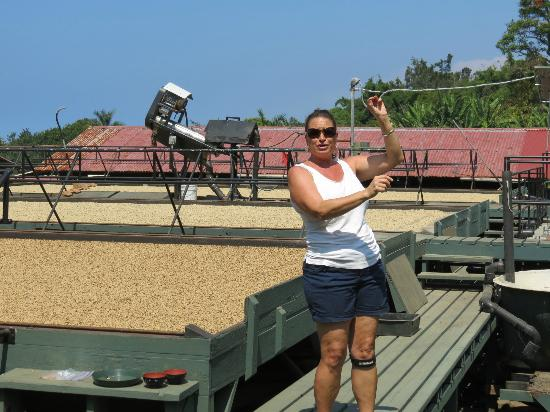 Greenwell Farms: Our tour guide...NOT dancing :) and bean drying.