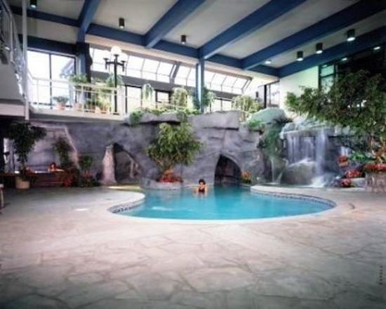Sidney James Mountain Lodge: Indoorpool