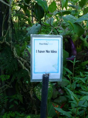Pura Vida Hotel: Nhi's garden (love their sense of humour)