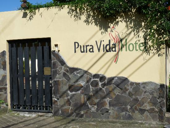 Pura Vida Hotel: We want to come back