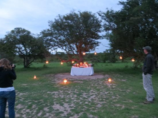 Londolozi Varty Camp: Last night's sundowners!
