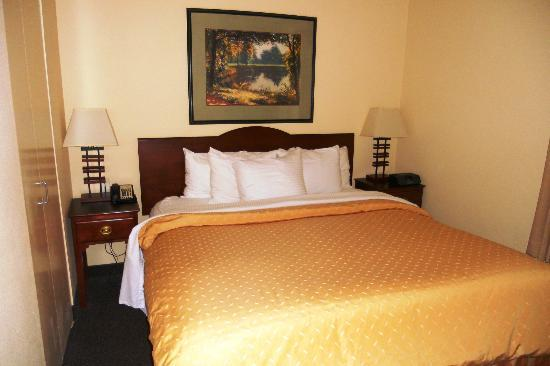 Larkspur Landing Bellevue: Executive Suite- King Bed