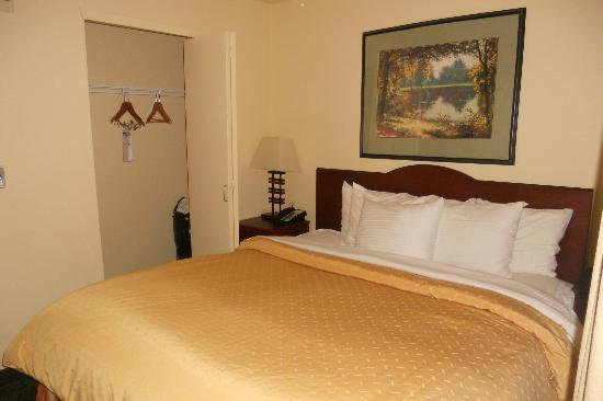 Larkspur Landing Bellevue: Executive Room- Bedroom with closet, King size bed and phone