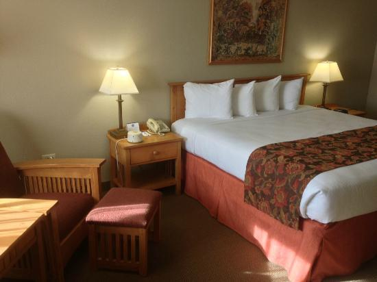 BEST WESTERN Foothills Inn: Sitting Area and King Bed