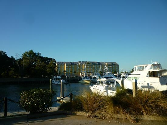 SpringHill Suites Charleston Downtown/Riverview: Yacht Club