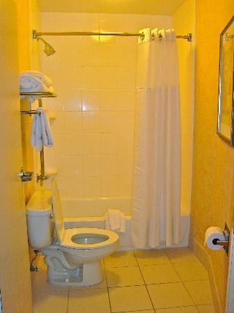 SpringHill Suites Memphis Downtown: shower/comode