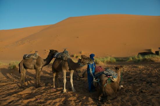 Yasmina Hotel Merzouga: berber camp