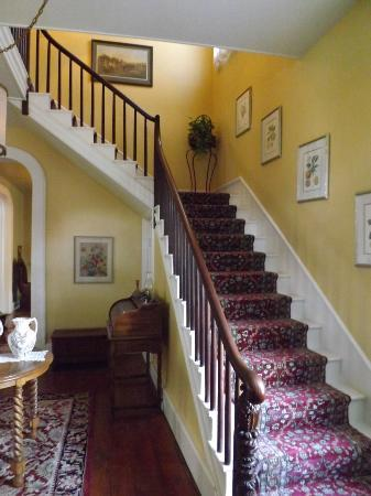 Bed & Breakfast at Oliver Phelps: stairway to bedrooms
