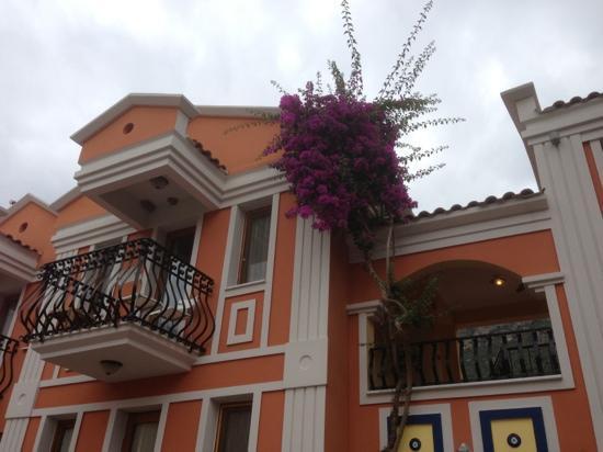 Magic Tulip Beach Hotel: our pretty little room