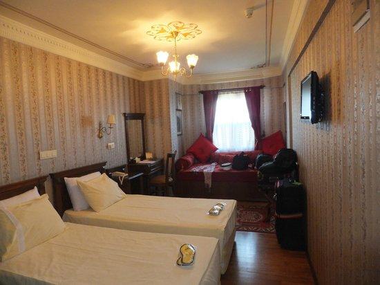 Dersaadet Hotel Istanbul: Room 501
