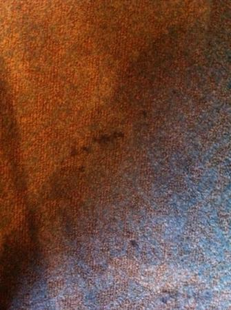 Holiday Inn Club Vacations At Orange Lake Resort: stained carpet