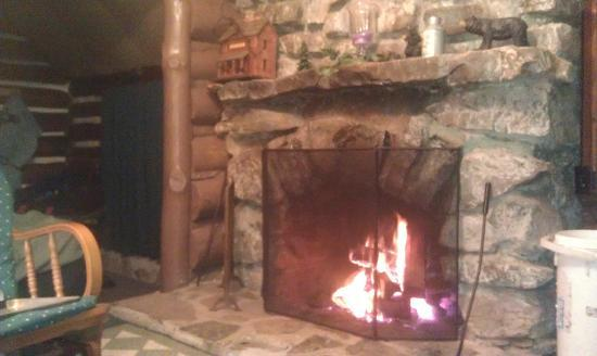 Leber's Log Cabins: Fireplace