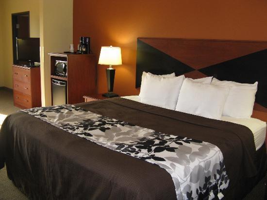Sleep Inn & Suites Madison : Madison Sleep Inn