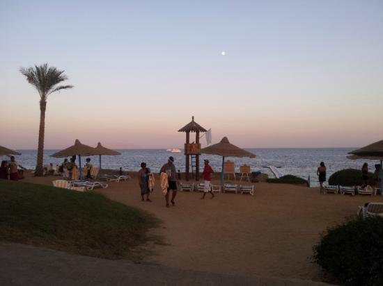Queen Sharm Resort: Luna Piena Tramonto spiaggia