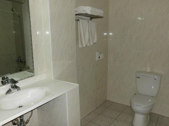 Mensvic Grand Hotel: baño
