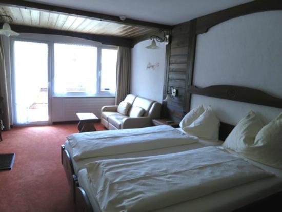 Hotel Antika: マウンテンビューのツインの部屋