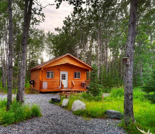 Aspen Hollow: Our Kenai Cabins
