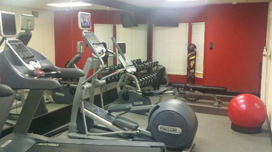 Homewood Suites by Hilton Orlando-Nearest to Univ Studios: Workout room