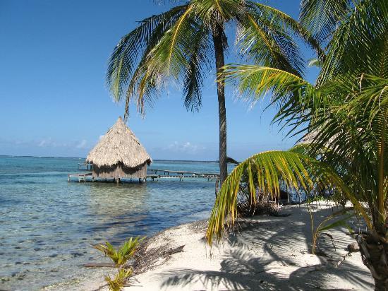 Glover's Atoll Resort: oh c'mon!!