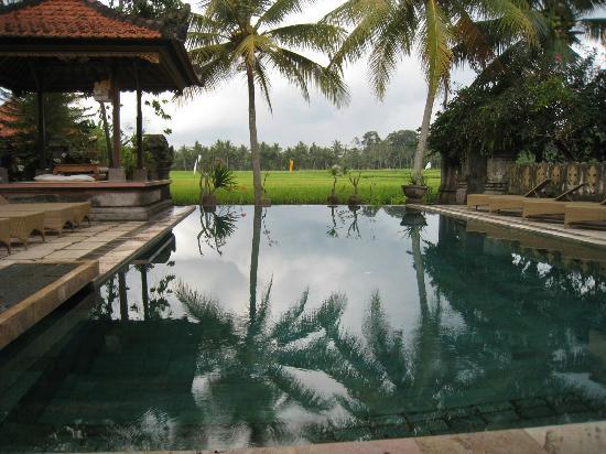 Green Field Hotel and Bungalows: Swimming pool