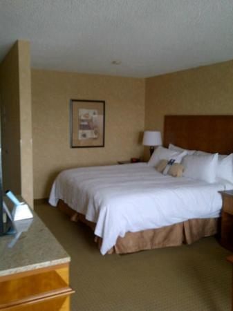Best Western Plus Suites Downtown : Bed