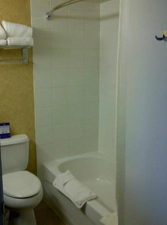 Best Western Plus Suites Downtown : Bathroom
