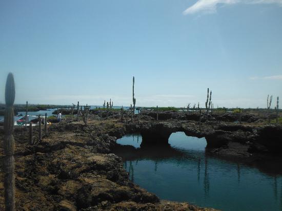 Los Tuneles: lava tunnels