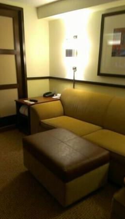 Hyatt Place Pittsburgh/Airport: couch